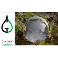 Nicholas Heyming - Individual Grantee Logo