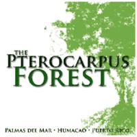 PHA Pterocarpus Forest, Inc.