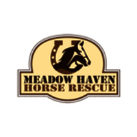 Meadow Haven Horse Rescue and  Sanctuary