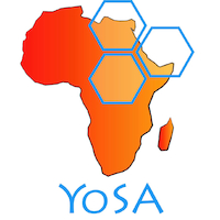 Young Scientists for Africa
