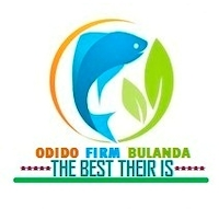 odido firm bulanda self help group