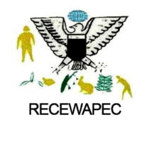 The Regional Center for the welfare of ageing person in Cameroon(RECEWAPEC)