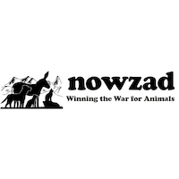 Nowzad Dogs NFP - DUPLICATE DO NOT USE