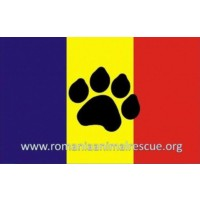 Romania Animal Rescue, Inc.