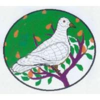 Association pour la Gestion Intégrée et Durable de l'Enviroonment (AGIDE)