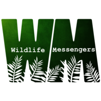 Wildlife Messengers
