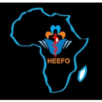Health and Education Enhancement Foundation (HEEFO)