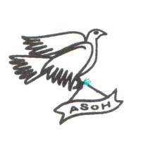 Acehnese Solidarity for Humanity (ASoH)