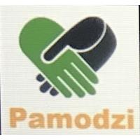 Association for Zambians in Belgium