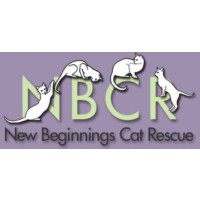 New Beginnings Cat Rescue