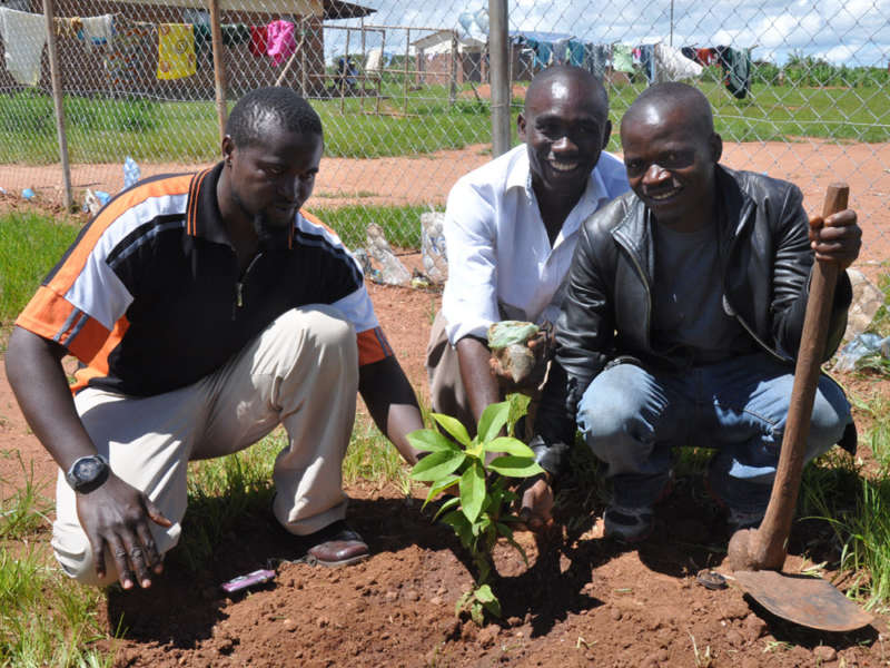 Image for Environmental Education in Malawi